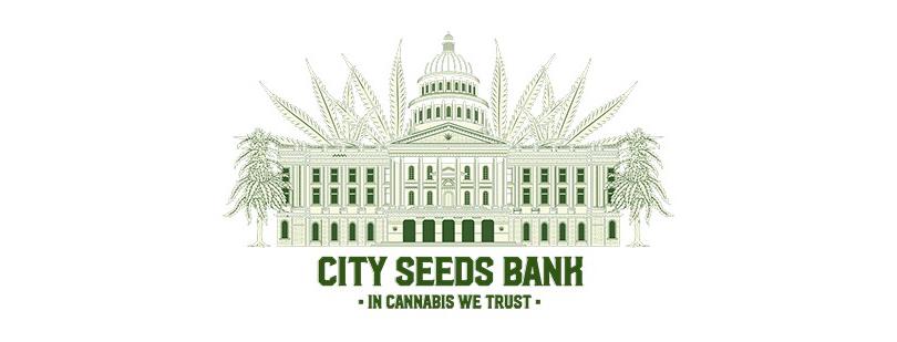 Encuentra nuestros productos en la tienda City Seeds Bank